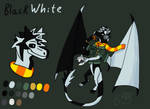 BlackWhite ref by BlackWhiteDragon80