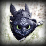 Toothless - The Alpha