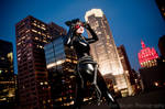 Catch me if you can - Catwoman