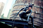 9 Lives - Catwoman
