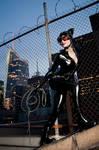 Cat Burglar - Batman
