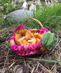 Fairy Folk Mushroom Gathering Basket Weaving