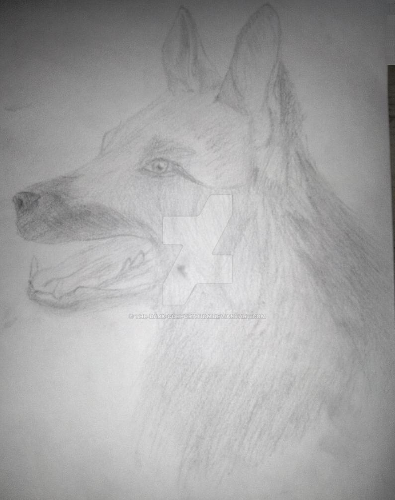 German Shepherd | Sketch Drawing from Bae by The-Dark-Corporation