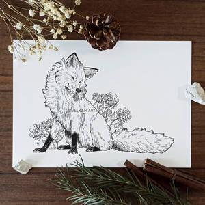 Pinecone Fox