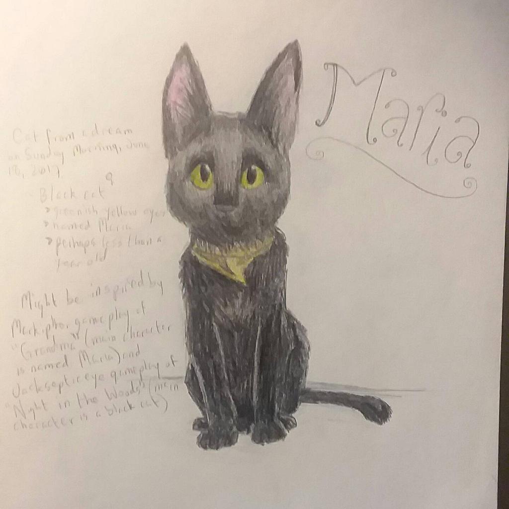Dream Cat: Maria by xXSilvrTheShipprXx