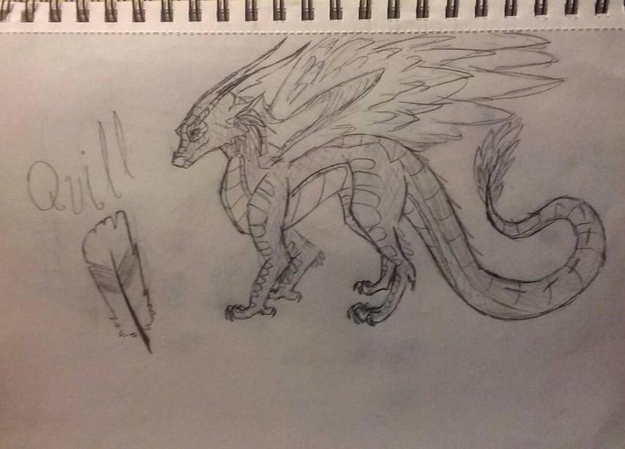 Quill as a Dragon  by xXSilvrTheShipprXx