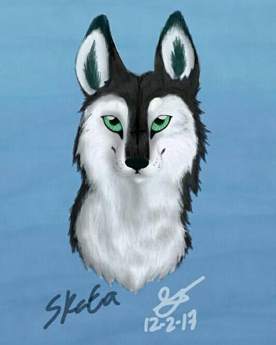 Wolves of the Beyond - Skata (OC) by xXSilvrTheShipprXx