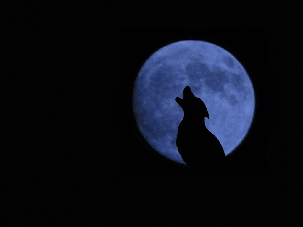 Wolf Howling Moon By Namari On Deviantart