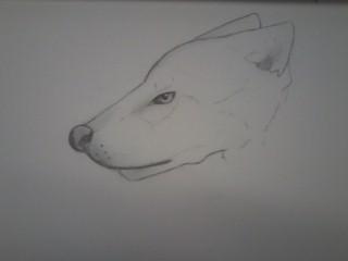 Lone Wolf by LittleRinnyKagamine