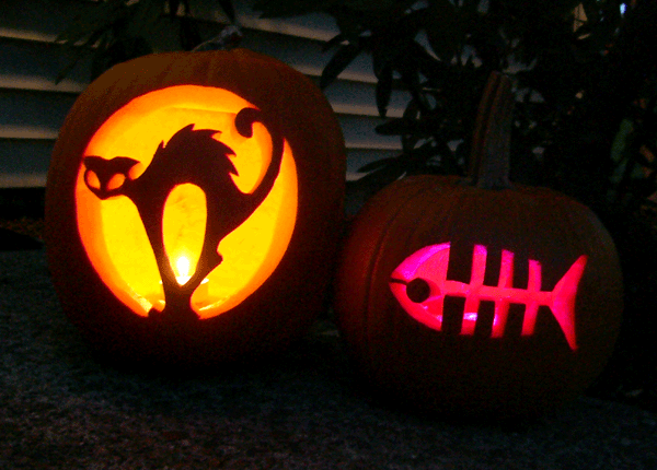 Cat themed pumpkins by mleiv on deviantart for Cat pumpkin designs to carve