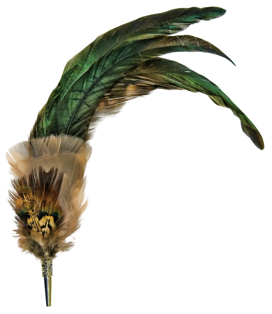 feathered broche png
