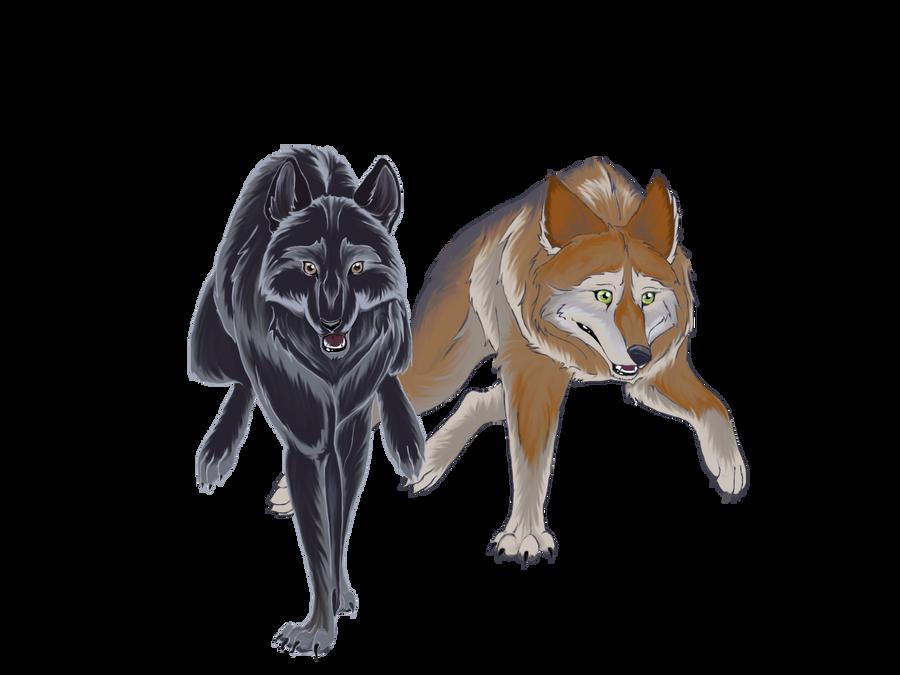 My lovely wolves by Nojjesz