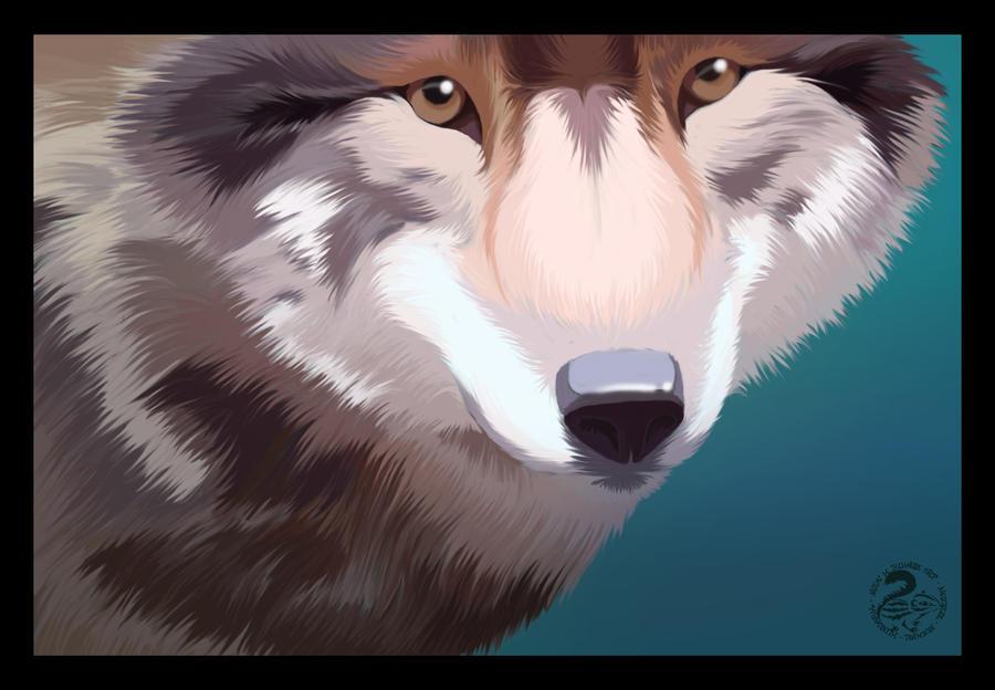 Eyes of the Wolf by Nojjesz