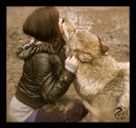 Kiss from the Alpha Wolf