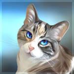 Calypso, the beautiful blue eyed