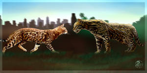 Meet the wild brother - commission for ahseelot by Nojjesz