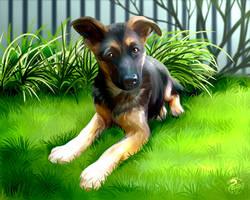 Lua the GS pup - Commission by Nojjesz