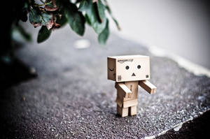 Wallpaper Danbo by TheEdux98
