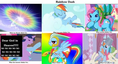 Rainbow Dash: What I Do by ElvenRaptor