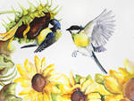 great tit and sunflowers