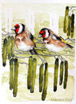 goldfinch watercolors