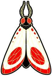 Moth Sticker Design