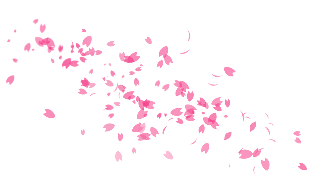 Pinky and cherry blossoms 7