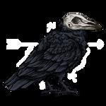 FTU - Raven Pixel 2.0