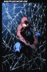Spiderman by Hoenhaimm