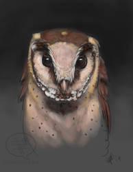 Oriental Bay Owl Speedpaint Portrait by comixqueen