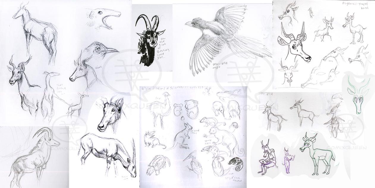 Academy of Sciences Animal Studies by comixqueen