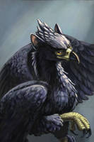 The Black Gryphon by comixqueen