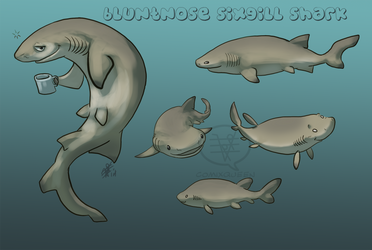 SHARK WEEK 2014 #2- Bluntnose Sixgill by comixqueen