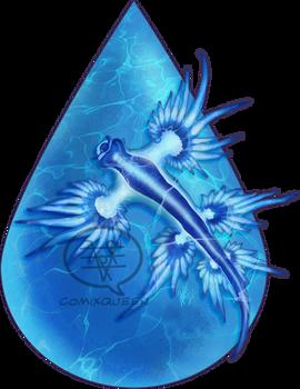 2021MMM - Glaucus atlanticus