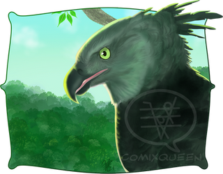 2021MMM - Harpy Eagle