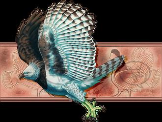 2021MMM - Harpy Eagle Round 2