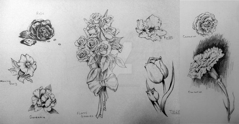 Traditional Flower Line Drawing : Flower sketches by rainwalker007 on deviantart