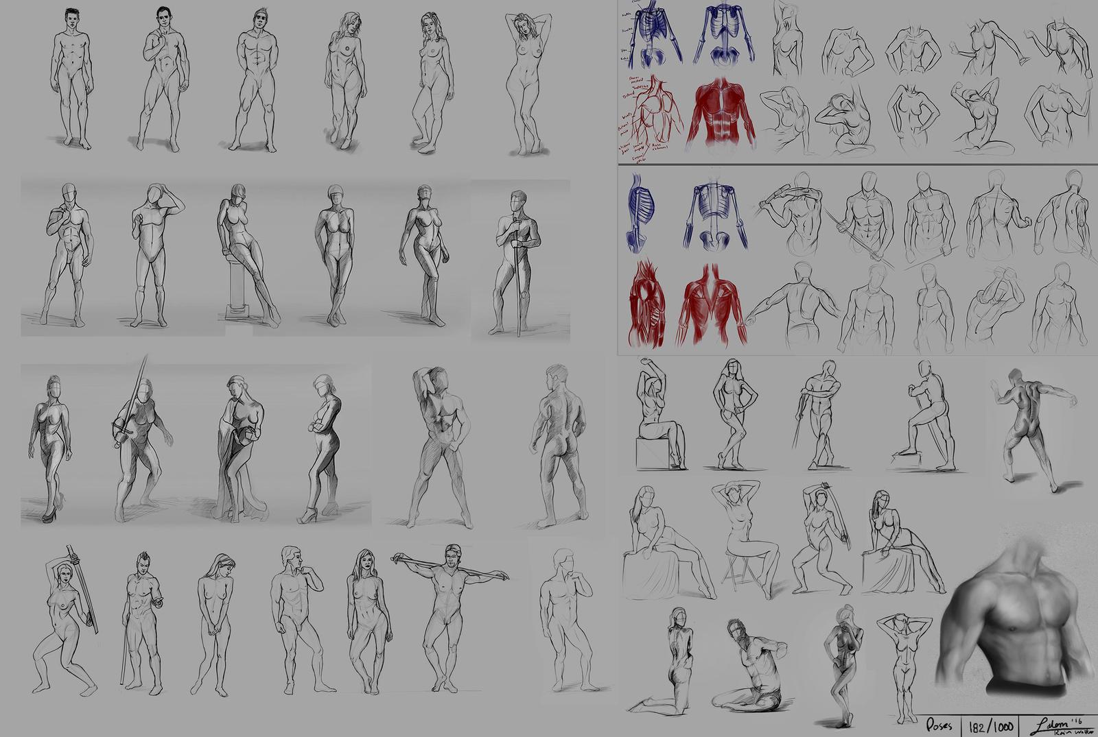 figure drawing Practice 182 / 1000 by rainwalker007 on DeviantArt