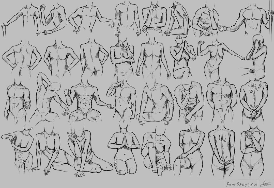 Arms study by rainwalker007