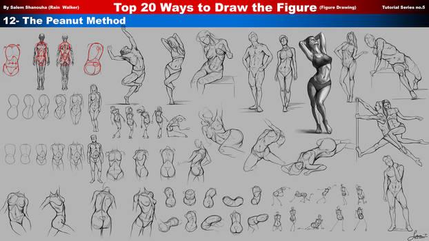 Top 20 Ways to Draw the Figure (The Peanut Method)