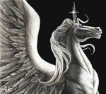 The One Winged Unicorn
