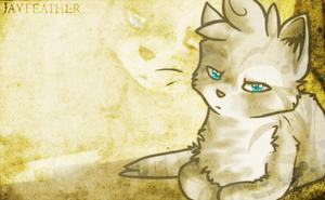 Jayfeather by Nifty-senpai