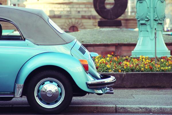 Beetle by tolgahann