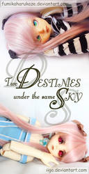 Two Destinies Under The Same Sky