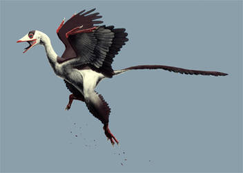 Archaeopteryx lithographica by keesey