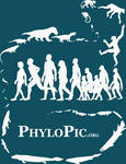 PhyloPic T-shirt: Human Evolution
