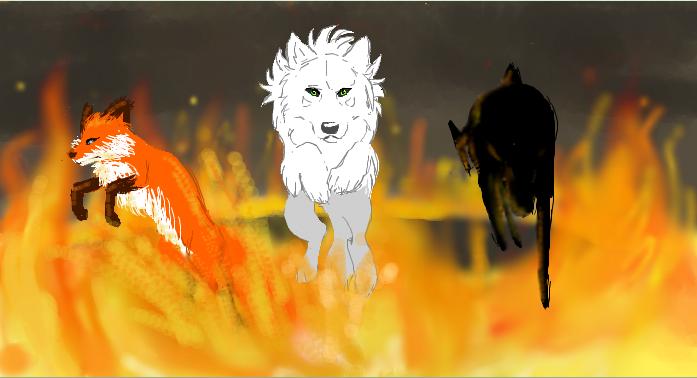 Fire jump by Donlvir