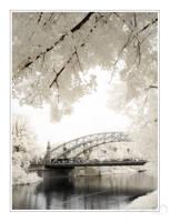 Dream-a-Bridge by tisbone