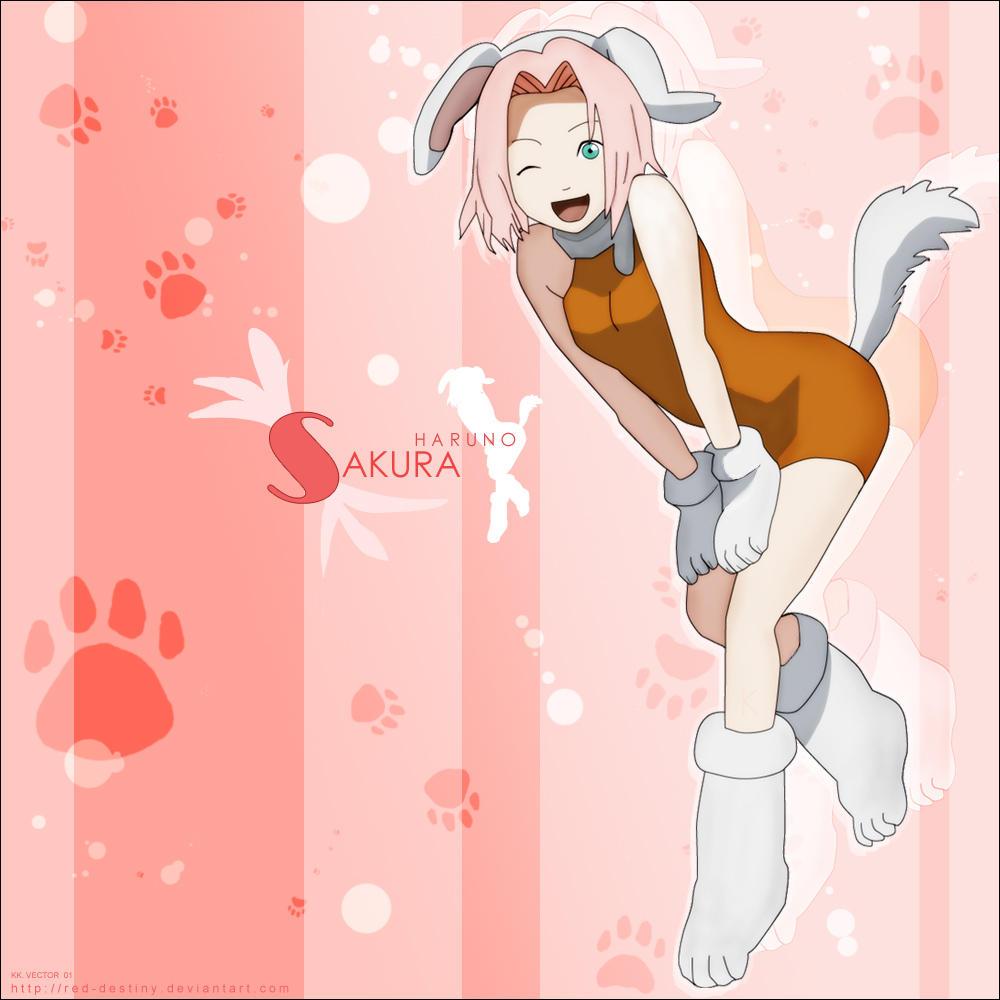 http://fc01.deviantart.com/fs9/i/2006/057/2/4/Haruno_Sakura___Inu_Cosplay_by_Red_Destiny.jpg