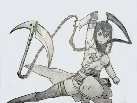 Tsubaki drawing